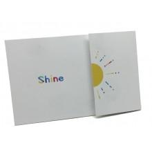 pochette shiny